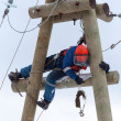 Stock Photo: Electriciworking on top of electricity pylon