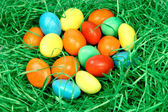 Coloured eggs in the grass — Stock Photo