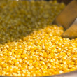 Stock Photo: Maize at market