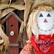 Scarecrow with birdhouse — Stock Photo