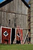 Broken barn door with ladder — Stock Photo