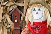 Scarecrow with birdhouse — Stock Photo
