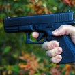Hand holding gun — Stock Photo #12457879