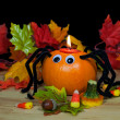 Halloween Pumpkin Spider — Stock Photo