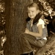 Smiling child in tree — Stock Photo