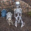Stock Photo: Skeletons and tombstones in dirt
