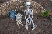 Skeletons and tombstones in dirt — Stock Photo