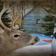 Deer with snowman — Stock Photo #15574645