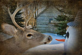 Deer with snowman — Stock Photo