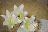Easter lilies with crown of thorns — Stock Photo