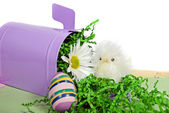 Easter chick with egg — Stock Photo
