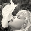 Stock Photo: Girl sniffing hibiscus