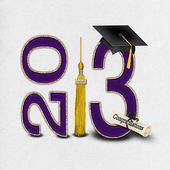 Purple and Gold 2013 Graduation — Stock Photo