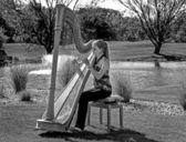 Harfistka na polu golfowym — Zdjęcie stockowe