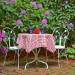 Stock Photo: Old-fashioned table in garden