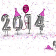 2014 New Year humor — Stock Photo