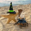 Halloween starfish on the beach — Stock Photo