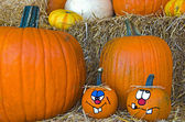 Cute faces on autumn pumpkins — Stock Photo