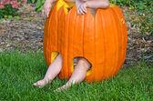 Baby in pumpkin — Stock Photo