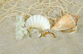 Diamond ring with seashells — Stock Photo