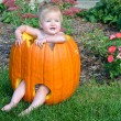 Baby girl in Halloween pumpkin — Stock Photo