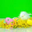 Baby chick with Easter eggs — Stock Photo