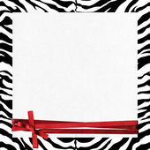 Zebra frame with ribbon — Stock Photo