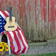 Stock Photo: Guitar on American flag