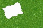 White card in Irish shamrocks — Foto Stock