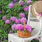 Summer hat with azaleas — Stock Photo