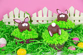 Easter bunny cupcakes — Photo