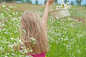 Young girl in daisy field — Stock Photo