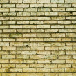 Brick background — Stock Photo #28708077