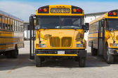 School bus — Foto Stock