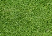 Zielonej trawy — Zdjęcie stockowe
