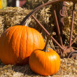 Pumpkins on cart — Stock Photo
