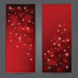 Set of Elegant Christmas banners with snowflakes. — Stock Vector #32756099