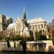 Notre Dame cathedral Paris — Stock Photo
