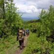 Stock Photo: Group of Travelling Along Forest Footpath