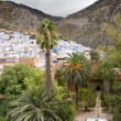 Chefchaouen, Morocco - View of this Small Town With Palms in the Foreground — Stock Photo #13786219