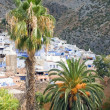 Stok fotoğraf: Chefchaouen, Morocco - View of this Small Town With Palms in Foreground