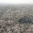 Rocky Surface in Tundra at the Svalbard Archipelago in the Arctic. - Stock Photo