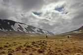 Persons Walking Tundra in the Svalbard Archipelago in the Arctic — Stok fotoğraf