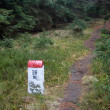 Stock Photo: Borderline Bollard Along Footpath in Deep Forest