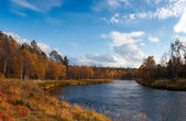 Colorful Autumn River With in Wild Woods — Stock Photo