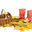 Basket with pine cones and childrens red rubber boots on the fal — Stock Photo #14187533