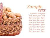 Nut in korb — Stockfoto