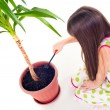 Plant Care — Stock Photo