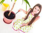 Plant Care — Stock Photo