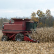Stock Photo: Combining corn field